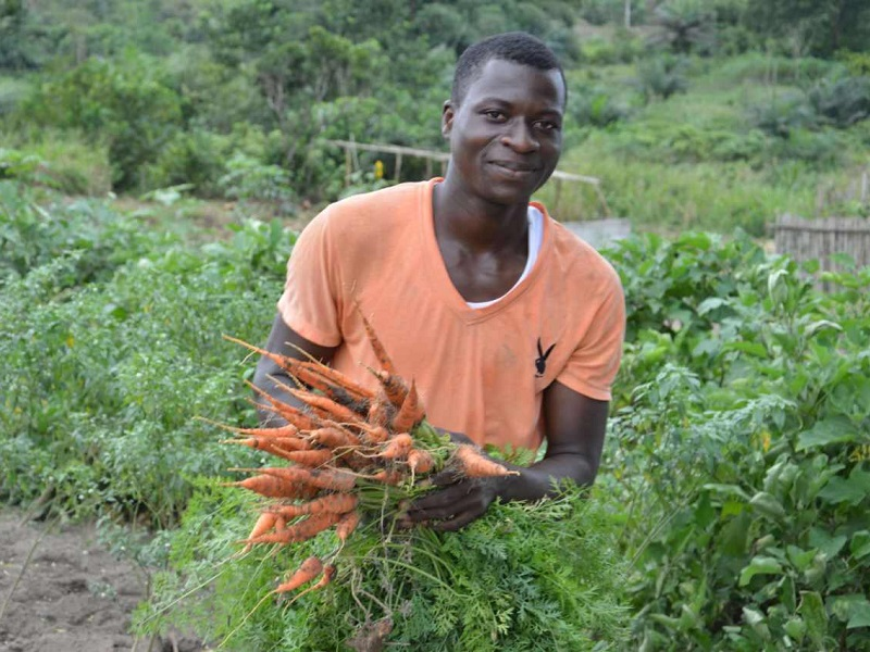 In Ghana, producers and consumers make organic farming grow