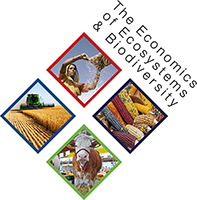 Foundations for the evaluation of agriculture and food systems